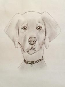 je-dessine-un-chien